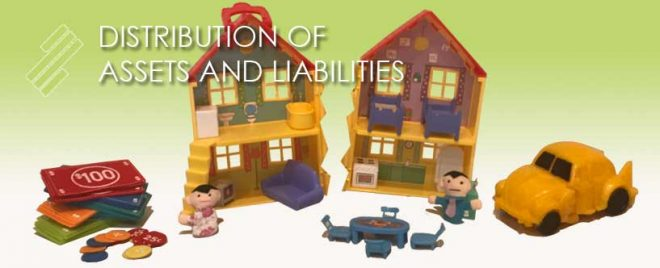 DISTRIBUTION_OF_ASSETS_AND_LIABILITIES